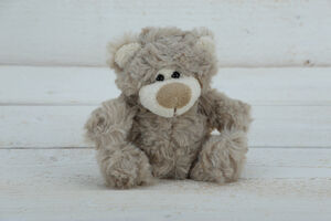 Baby Teddy Bear Gift Boxed