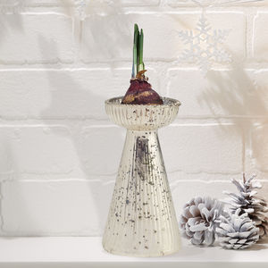 Antiqued Mercury Glass Bulb Forcing Vase - vases