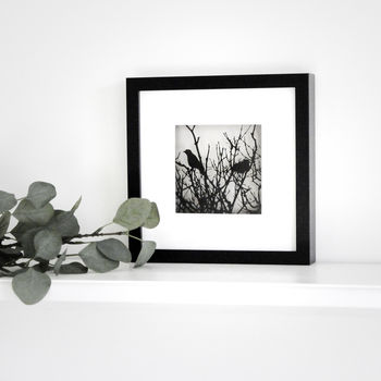 Framed Paper Cut Bird Picture