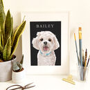 Pet Portrait Full Colour Illustration Dog Cat Etc