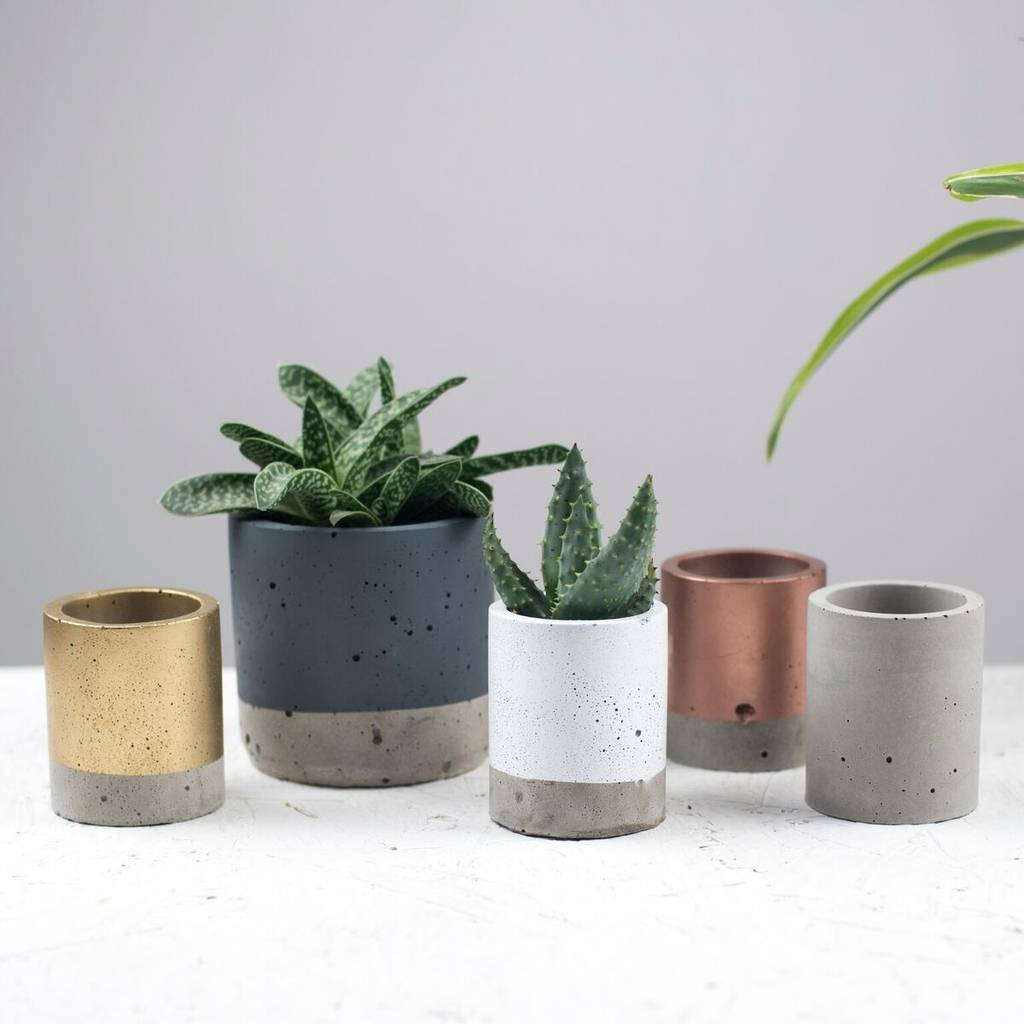 Small Coloured Concrete Planter by Bells And Whistles Make