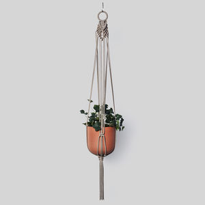 Macrame Plant Hanger 'The Collar' In Hemp Cord - pots & planters