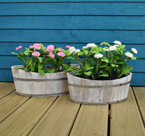 White Washed Boat Shaped Planters - pots & planters