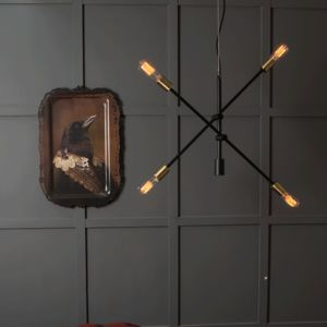 Arm Chandelier Light - new in home