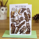 Owls Of Britain Art Blank Greeting Card
