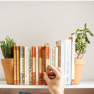 Living Plant Pot Bookends - bookends