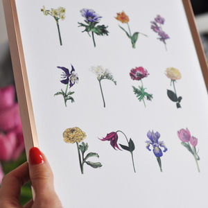 Mini Colour Flower Print - vintage botanics