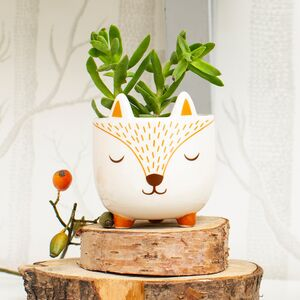 Woodland Fox Planter With Choice Of Plants