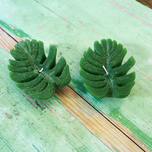 Botanical Leaf Candle, Set Of Two