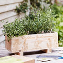 Indoor And Outdoor Herb Growing Kit