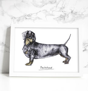 'Donald The Dachshund' Signed Giclee Art Print