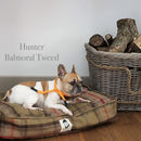 Tweed Dog Cushion Available In Five Colours
