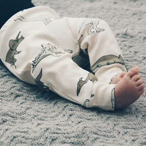 Dinosaur Print Organic Baby Leggings - clothing