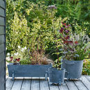 Shelton Trough Planter