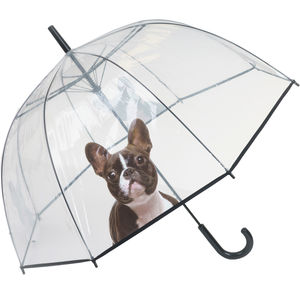 Cute Dog Dome - umbrellas & parasols