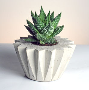 Pleated Zig Zag Round Geometric Concrete Planter - flowers, plants & vases