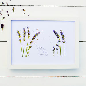 Lavender Illustration And Photographic Print