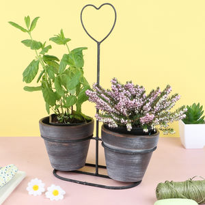 Decorative Heart Planter With Pots - living room