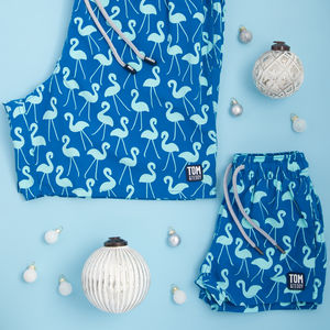 Father And Son Matching Sky Blue Flamingo Swim Shorts