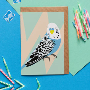 Ben The Budgie Bird Card