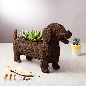 Dachshund Planter - mum loves gardening