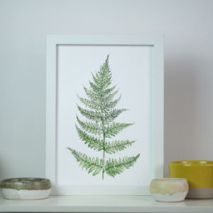 Fern Botanical Watercolour Art Print