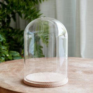 Minimal Glass Display Dome With Beech Base - decorative accessories