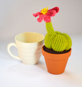 Crocheted Amigurumi Spider Cactus - flowers, plants & vases