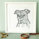 Contemporary Typed Boxer Dog Print