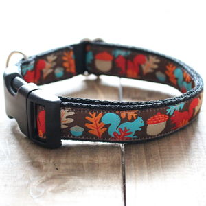 Mr Sells Squirrel Dog Collar - dog collars