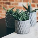 Textured Grey Plant Pots Various Sizes