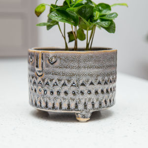 Planter No 155 Hettie - re-earthed