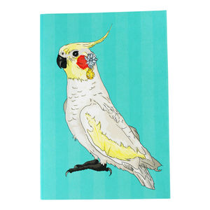 Cockatiel A5 Notebook - notebooks & journals