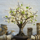Bonsai LED Cherry Tree