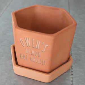 Hexagonal Engraved Chilli Pot - shop by recipient