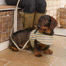 Tetbury Linen Stripe Dog Harness