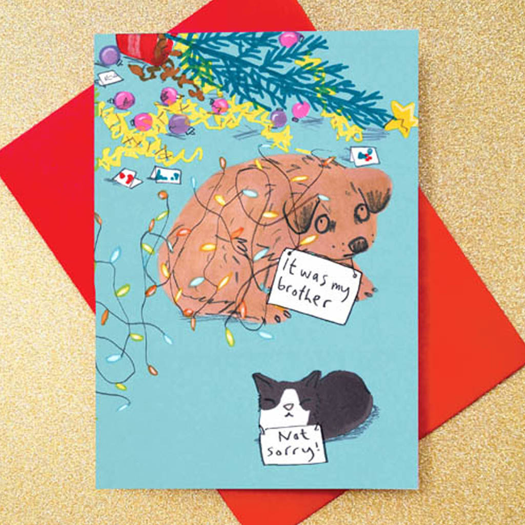 dog christmas card funny dog and cat card