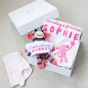 Personalised Babygrow And Monkey Friend Gift Set