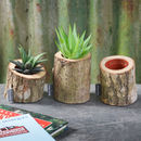 A Set Of Three Oak Bark Planters