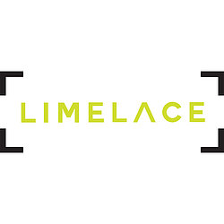Lime Lace Logo