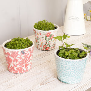 Set Of Three Bohemian Summer Floral Plant Pots - pots & planters