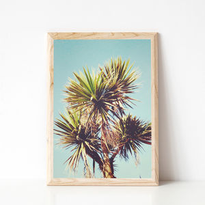 Palm Photographic Nature Print