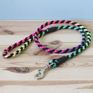 Rainbow Tie Dye Paracord Dog Lead - dogs