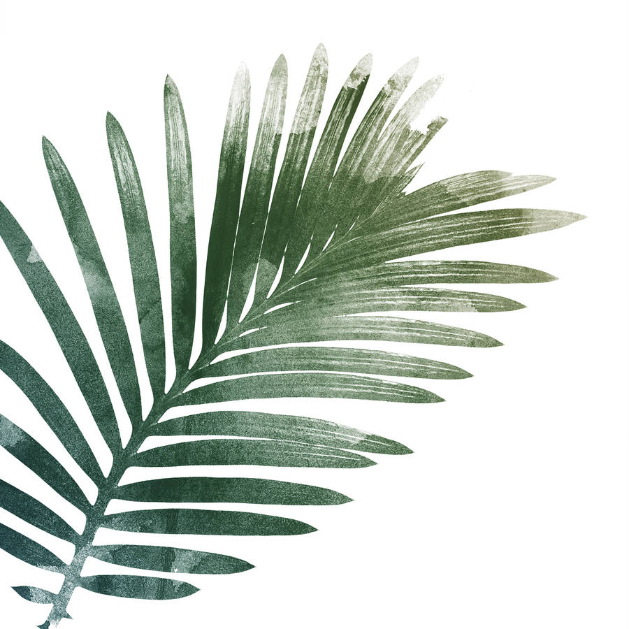 Exhilarating image with regard to palm leaf printable