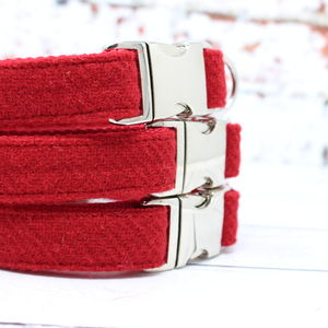 Elspeth Harris Tweed Dog Collar - walking
