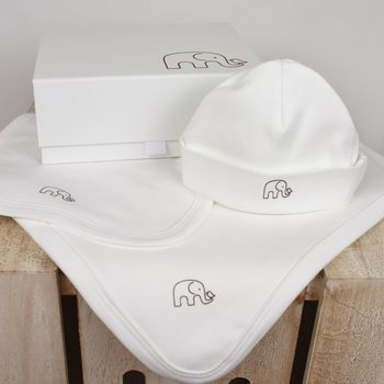 Blanket, Bib And Beanie Gift Set