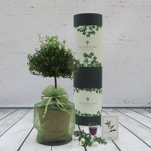 Myrtle 'Tree Of Love' Gift - home accessories