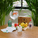 Three Styles Of Gin Tasting Gift Set