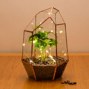 Copper Coffee Gem Terrarium - home accessories
