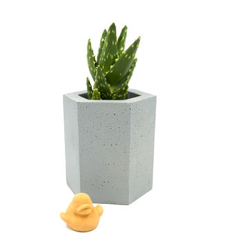 Hexagonal Concrete Plant Pot